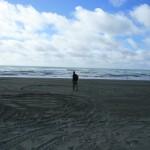 einsame Westküste